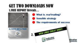 professional trader presentation