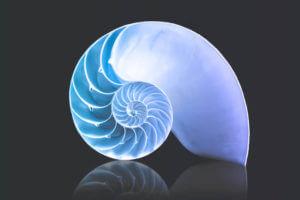 Daily Range and Fibonacci