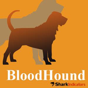 Bloodhound for NinjaTrader BAcktesting